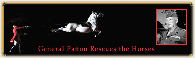 General Patton Rescues the Horses